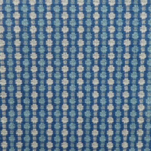 Castor Blue (3)