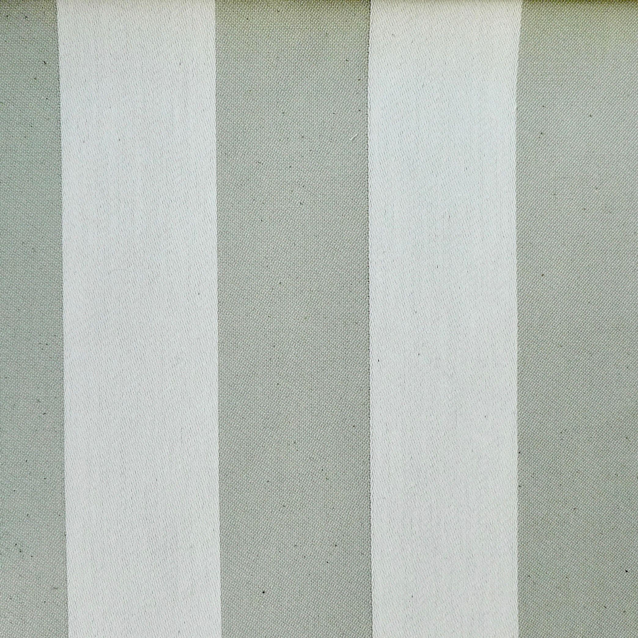 Two-Tone Stripe Thyme