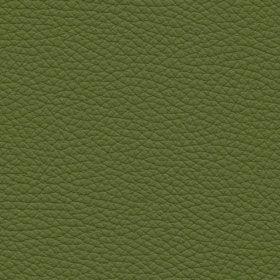 Toledo Applegreen - Leather