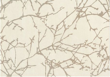Acacia Crema