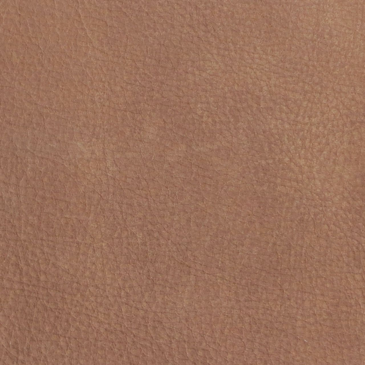 Aura Hide 10 - Leather