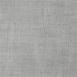 Fabric - Asher Silver (B)