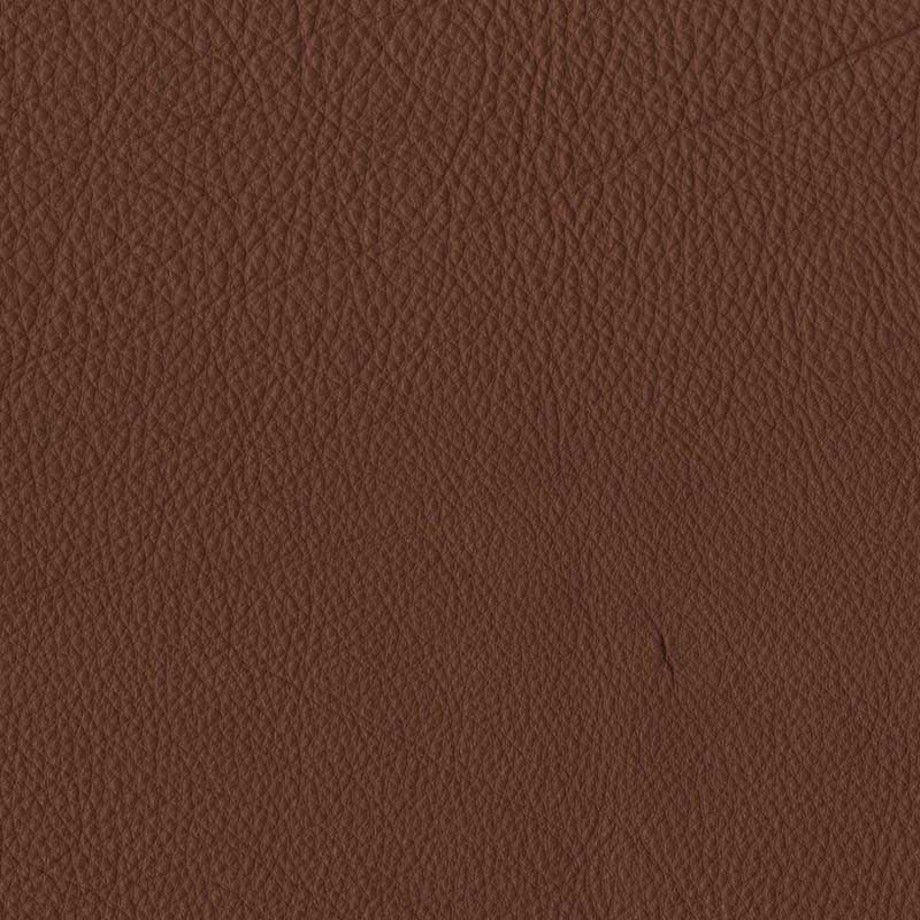 Touch Cognac - Leather