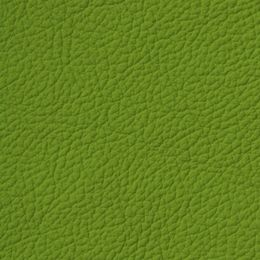 Apollo Olive Green - Leather